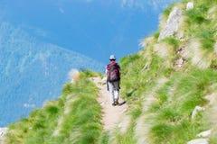 走在山的供徒步旅行的小道的背包徒步旅行者 夏天冒险在阿尔卑斯的暑假 旅行癖人旅行的骗局 库存照片