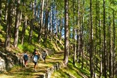走在山的孩子 免版税图库摄影
