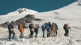 走在山的雪足迹的旅游小组 dragobrat横向山乌克兰冬天 股票视频