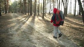 走在山行迹,道路的冒险的孩子,远足与背包,步行在森林里的远足者,享受自然在野营 股票视频