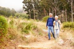 走在往照相机的一个森林里的资深夫妇 库存图片