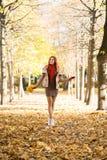 走在拿着五颜六色的叶子的秋天时间的公园的可爱的少妇 库存图片