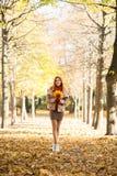 走在拿着五颜六色的叶子的秋天时间的公园的可爱的少妇 库存照片