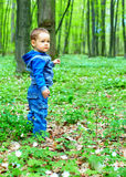 走在春天森林里的逗人喜爱的男婴 免版税图库摄影