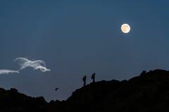 走在月亮下 免版税库存照片