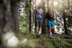 走在有太阳火光的森林森林的男人和妇女夫妇点燃 小组朋友人夏天冒险旅途 免版税库存图片