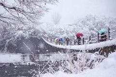 走在木桥的游人在Shirakawago 免版税库存图片