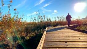走在木道路的人,在沼泽地自然公园La Marjal在Pego和奥利瓦山脉 股票录像