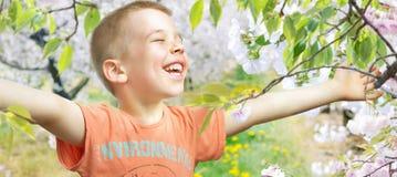 走在果树园的一个小男孩的画象 免版税库存照片