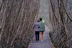 走在桥梁的人们在有木走道桥梁的美洲红树森林里 Phetchaburi,泰国 免版税库存照片