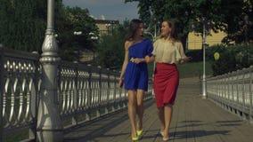 走在桥梁的无忧无虑的端庄的妇女在春天 股票视频