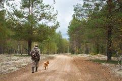 走在森林公路的猎人 免版税库存图片
