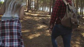 走在森林的年轻夫妇在晴天期间 股票视频