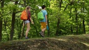 走在森林的远足者渐近-少年和妇女背包徒步旅行者 股票视频
