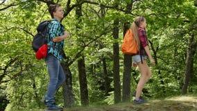 走在森林的远足者渐近-少年和妇女背包徒步旅行者 股票录像