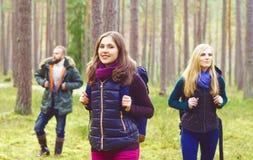 走在森林里和享受好秋天的年轻愉快的朋友 库存图片