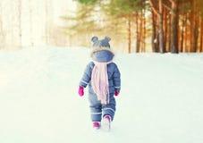 走在森林里的一个小孩的剪影在冬天 库存图片