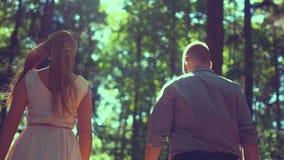 走在森林里的夫妇在晴天 股票视频