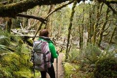 走在森林里的妇女远足者 免版税库存照片