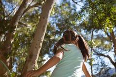 走在森林里的小女孩在一个晴天 免版税库存照片