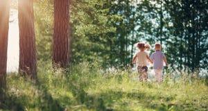 走在森林里的男孩和女孩在夏天 免版税库存图片