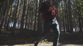 走在森林里的英俊的年轻人 股票录像
