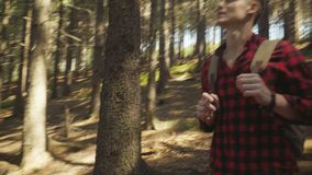 走在森林里的英俊的年轻人 股票视频