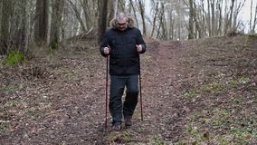 走在森林里的远足者 股票录像