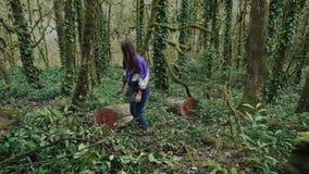 走在森林里,女孩找到树桩,去它并且为有坐下了休息 股票视频