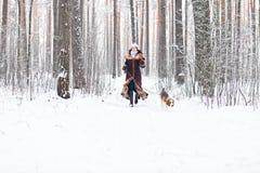 走在森林里 免版税图库摄影
