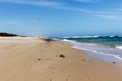 走在沙滩 库存图片