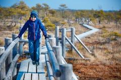 走在沼泽, Kemeri国家公园,拉脱维亚的足迹的逗人喜爱的小男孩 免版税库存图片