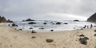 走在海岸 库存图片