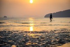 走在海滨和看日落的少妇在泰国 免版税库存照片
