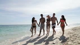 走在海滩谈话,年轻游人小组通信美好的晴朗的风景的人们 影视素材