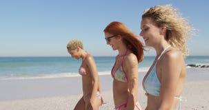走在海滩4k的年轻成年女性朋友 股票视频