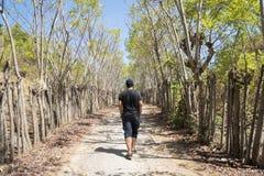 走在热带森林里的年轻人 免版税图库摄影