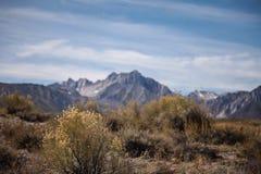 走在热的小河地质站点附近 免版税图库摄影