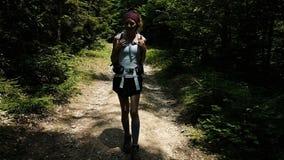 走在照相机的一次远足的美女在森林 有一个背包的游人在一国立公园在森林里 影视素材