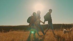 走在特性男孩女孩和妈妈的愉快的家庭蚊子进行缓慢运动视频一个领域的在迁徙的旅行 游人 股票视频