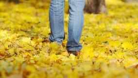 走在的人下落的叶子 影视素材