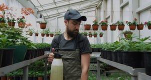 走在盆栽植物中的花匠 股票录像