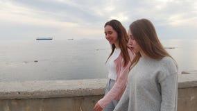 走在码头的两年轻女人 股票视频