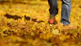 走在秋叶的人 影视素材