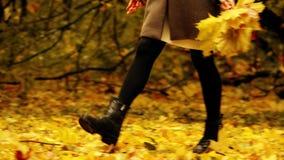走在秋天公园和收集下落的叶子的少妇 免版税图库摄影