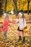 走在秋天公园的两个女孩 库存照片