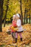 走在秋天公园的两个女孩 免版税库存图片