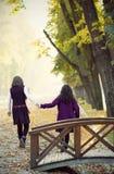 走在秋天公园的两个学校女孩 库存图片