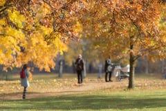 走在秋天公园的人们 免版税库存照片