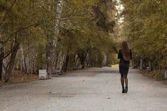 走在秋天公园的女孩 免版税库存图片